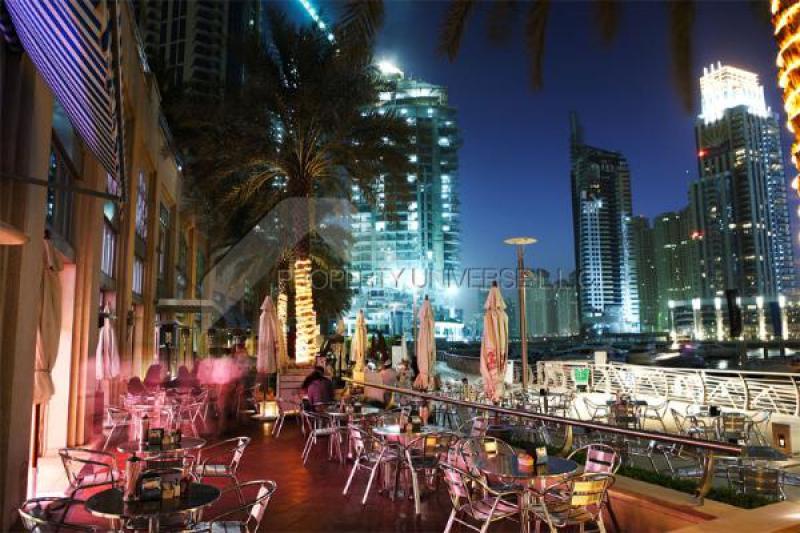 Dubai Marina   Dubai Marina   PICTURE1