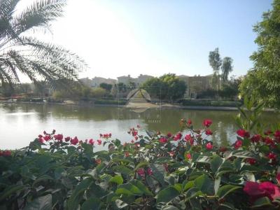 http://www.sandcastles.ae/dubai/property-for-sale/villa/arabian-ranches/3-bedroom/al-reem-1/10/10/2014/villa-for-sale-CE-S-1795/125928/