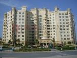 1 Bedroom,Apartment,Palm Jumeirah,Shoreline Apartments,Real Returns Real Estate,RR-R-1907